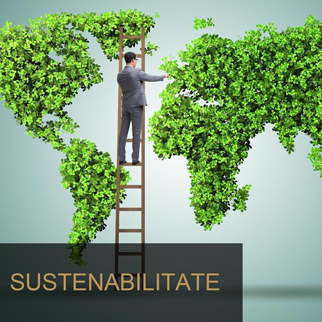 gemini sustenabilitate
